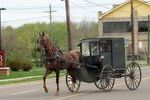 http://temp_thoughts_resize.s3.amazonaws.com/a2/e405b0c51311e3a6f77d020075559b/amish-buggy-in-penn-yansmall.jpg